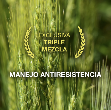 Exclusiva Triple Mezcla - Manejo antiresistencia